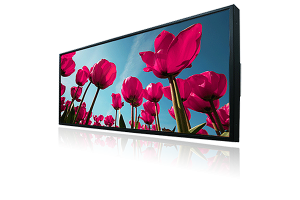 "29.3"" Ultra Wide Stretched LCD Monitor (1920x710) 1000 NIT"